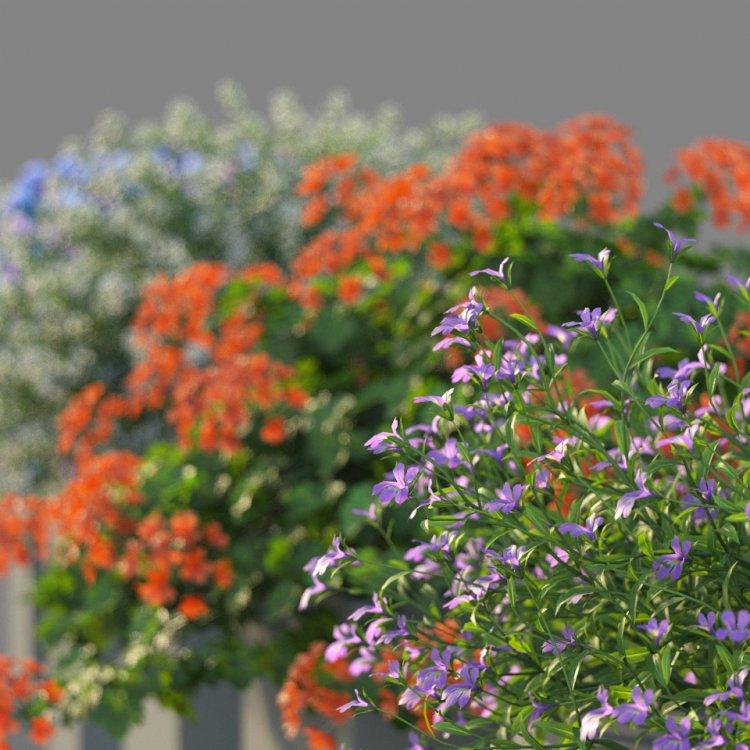 flower_test_11.jpg