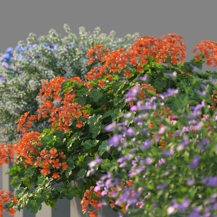 flower_test_12.jpg